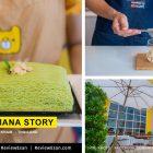 """คาเฟ่สีเหลืองสุดฮอตเมือง มหาสารคาม """"MANEE MANA STORY"""" (เปิดใหม่62) #รีวิวารคาม #รีวิวมมส #รีวิวอีสาน reviewesan.com"""