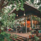 """คาเฟ่สีเขียวสุดๆเมืองโคราช """"AT NAI SUAN (@ในสวน)"""" โคราช (ข้อมูล+รวมรีวิว) #รีวิวโคราช #รีวิวอีสาน reviewesan.com"""